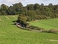 The lane below Pougley - geograph.org.uk - 257548.jpg