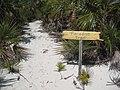 This Way to Paradise (3426333180).jpg