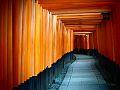 Thousand Torii.jpg