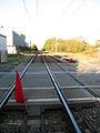 Tivetshall Railway.jpg