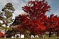Tofuku-ji (4585124433).jpg