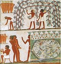 Tomb of Nakht (12).jpg