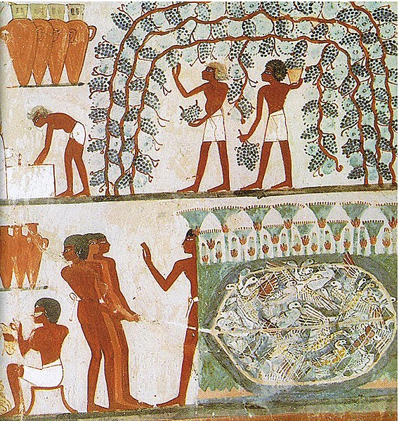 Tomb of Nahkt, Egypt
