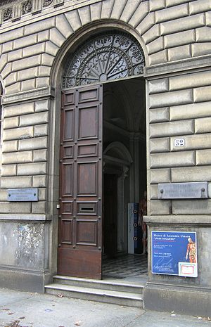 Museum of Human Anatomy Luigi Rolando - Image: Torino Museo Anatomia