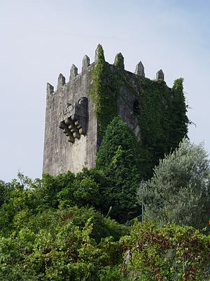 Vila Verde - Image: Torre de Penegate