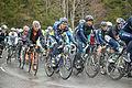 Tour de Romandie 2013 - étape4 - peloton dans le col des Mosses (4).jpg