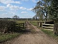 Track from Monks Hall Farm towards Bridge 80 - Audlem - geograph.org.uk - 1749112.jpg