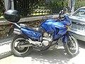 Transalp 650 DSC00415.JPG
