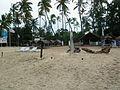 Trincomalee, la plage des pêcheurs (17).jpg