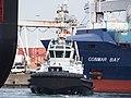 Triton (tugboat, 2008) Port of Rotterdam pic1.JPG