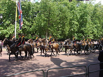 Postilion - Trooping the Colour London, 2009