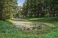 Tula YasnayaPolyana asv2019-09 img22 Lower Pond.jpg