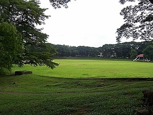 English: Sunken Garden of University of the Ph...