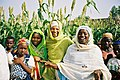USAID works with Nigerians to improve agriculture, health, education, and governance (7269587244).jpg