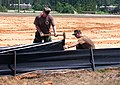 US Navy 050708-N-0000M-001 U.S. Navy Seabees set up a barrier to retain loose topsoil in preparation of the arrival of Hurricane Dennis on board Naval Construction Battalion Center Gulfport.jpg