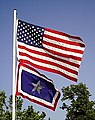 US and Silver Star Flag.jpg