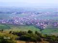 Ujmiri ( Radivojci).png