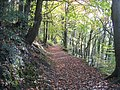 Upper footpath at Moss Valley Country Park - geograph.org.uk - 1038823.jpg