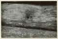 Utgrävningar i Teotihuacan (1932) - SMVK - 0307.g.0112.tif