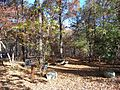 Uwharrie National Forest Picnic Area - panoramio.jpg