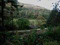 Valley of the Water of Assel, below Pinmore - geograph.org.uk - 262933.jpg