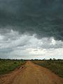 Vichada road.jpg