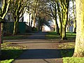 Victoria Park - geograph.org.uk - 339848.jpg