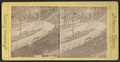 View at Congress Park, Saratoga, from Robert N. Dennis collection of stereoscopic views 2.png