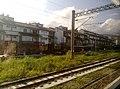 View from train in Yilan 01.jpg