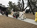 View in front of Shinkan Hall in Sumiyoshi Grand Shrine.jpg