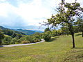 View of Bjelusa - 7309.CR24.jpg