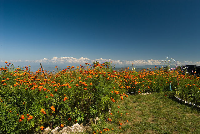 http://upload.wikimedia.org/wikipedia/commons/thumb/9/99/View_of_Himalayas_from_the_top_of_Mukteshwar.jpg/640px-View_of_Himalayas_from_the_top_of_Mukteshwar.jpg