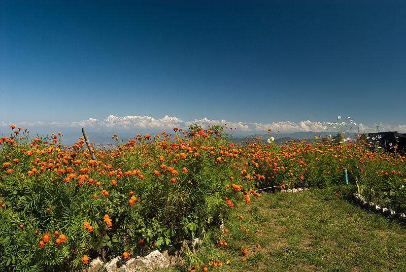 Scenic mountains of Mukteshwar