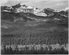 "View of trees and snow-capped mountains, ""Long's Peak from Road, Rocky Mountain National Park,"" Colorado, 1933 - 1942 - NARA - 519954.tif"