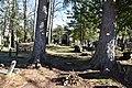Viggiù - Cimitero vecchio 1105.jpg