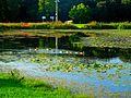 Vilas Park Lagoon - panoramio (6).jpg