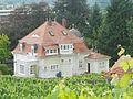 Villa Mundt Erlenbach am Main.JPG