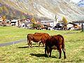 Village de montagne (pueblito de montaña).jpg