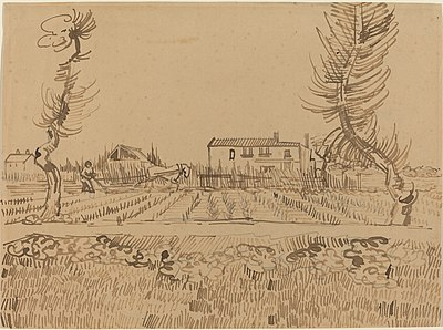 Ploughman in the Fields near Arles (1888), National Gallery of Art, Washington, D.C. Van Gogh never ceased drawing during any period in his artistic life.