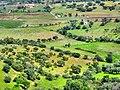 Vista desde monsaraz (Fr Antunes).jpg