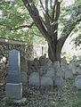 Vlachovo Březí (okr. Prachatice), židovský hřbitov, pohled od severu.JPG