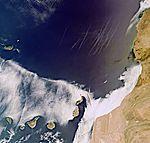 Volcanic Canaries.jpg