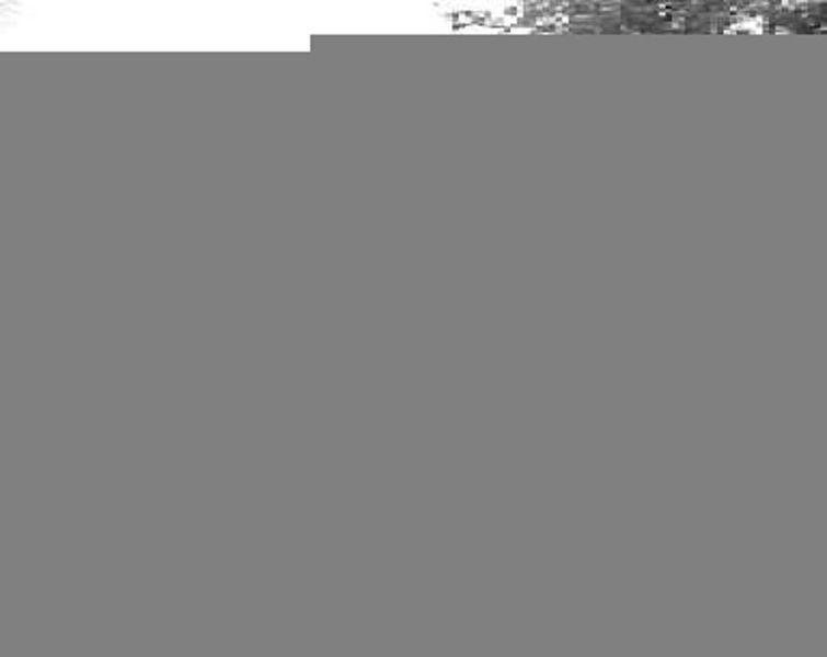 File:Voorgevel neg. v. bewoners - Sint Jacobiparochie - 20453307 - RCE.jpg