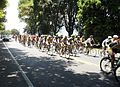 Vuelta a Colombia 2012.JPG