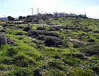 Wadi-Makukh-Mitzpe-Dani-499.jpg