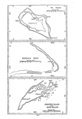 Wake Kingman Johnston Islands map EO 6935 illustration.png