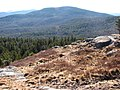 Wapack Trail 4 (7638330570).jpg