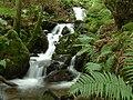 Waterfall near Duddon Bridge - geograph.org.uk - 7727.jpg