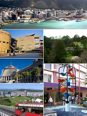 Clockwise from top: *Wellington Harbour and Skyline *Wellington Botanic Gardens and Treehouse Visitor Center *The Bucket Fountain on Cuba Street *Wellington Cable Car with city in background *The Beehive and Parliament Buildings *Te Papa Museum