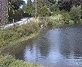 Wetwang Pond - geograph.org.uk - 1160949.jpg